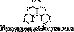 Turqoise Mountain logo